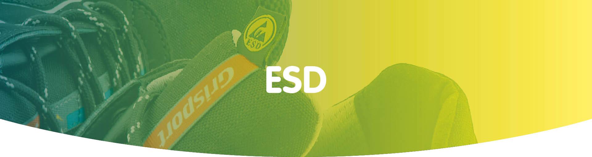 ESD Normering